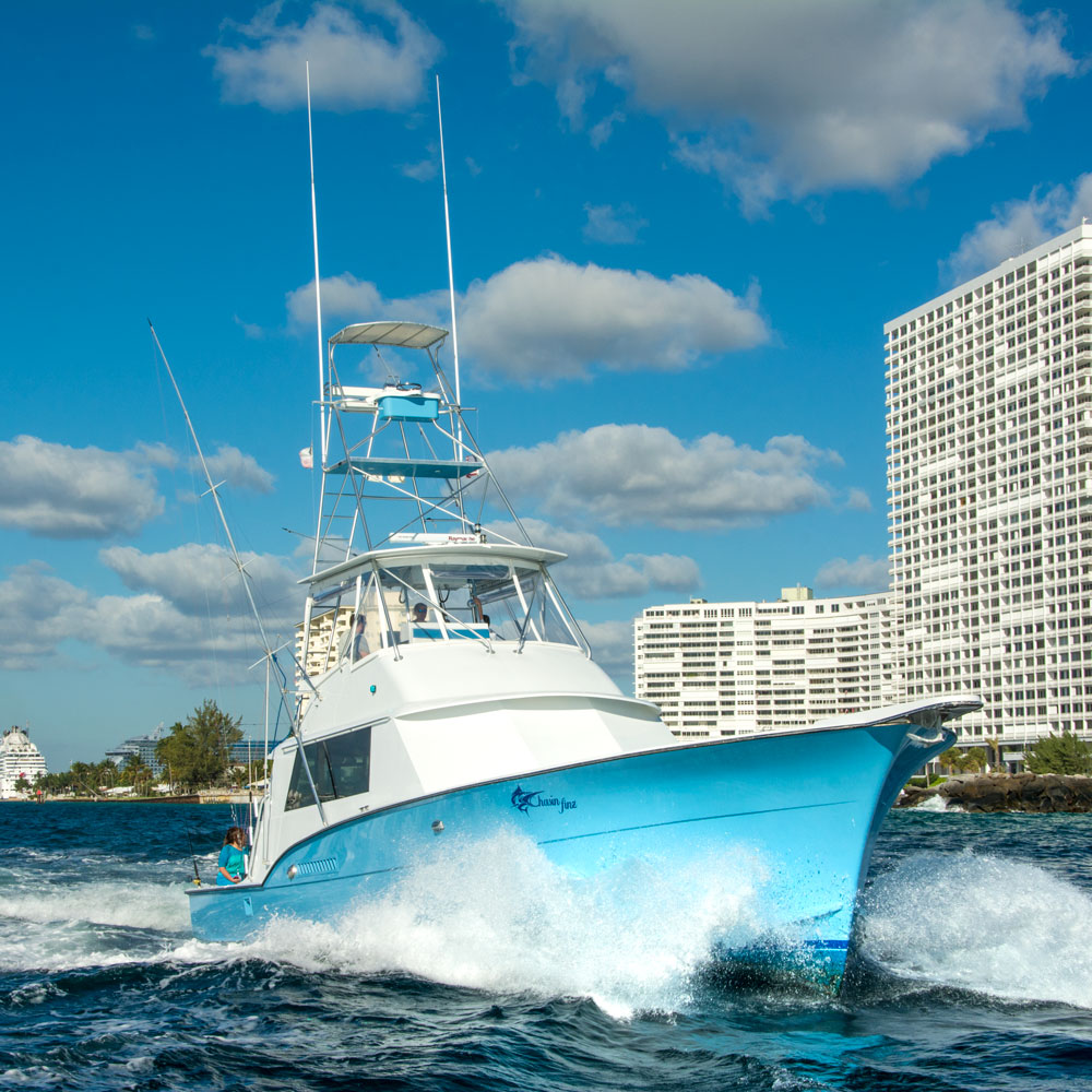 deep sea fishing charter hollywood fl chasin finz